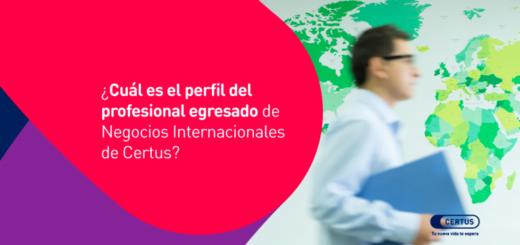 Cuál es el perfil del profesional egresado de Negocios Internacionales