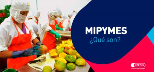 ¿Qué significa MIPYMES?